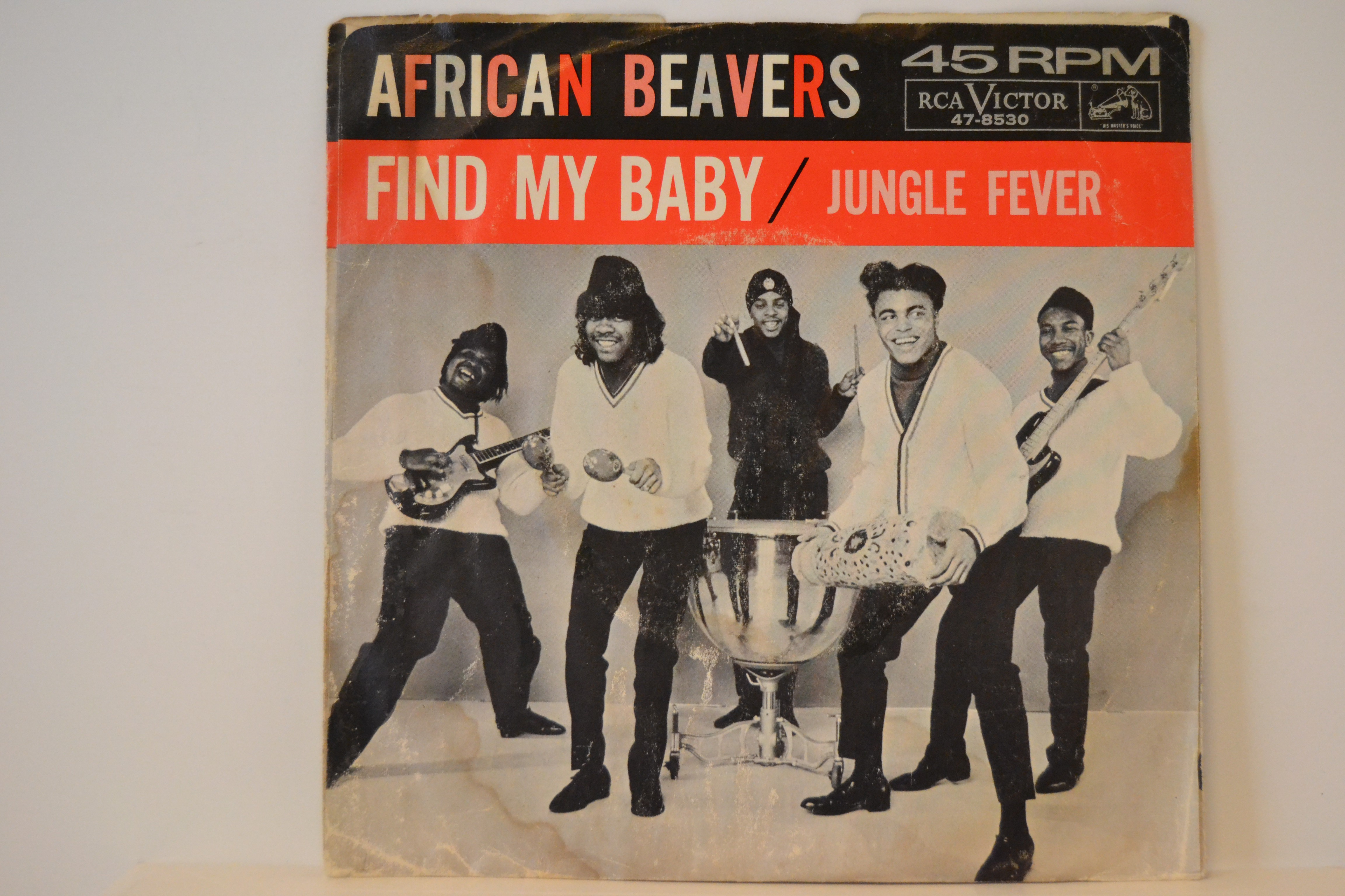 AFRICAN BEAVERS : Find my baby / Jungle fever