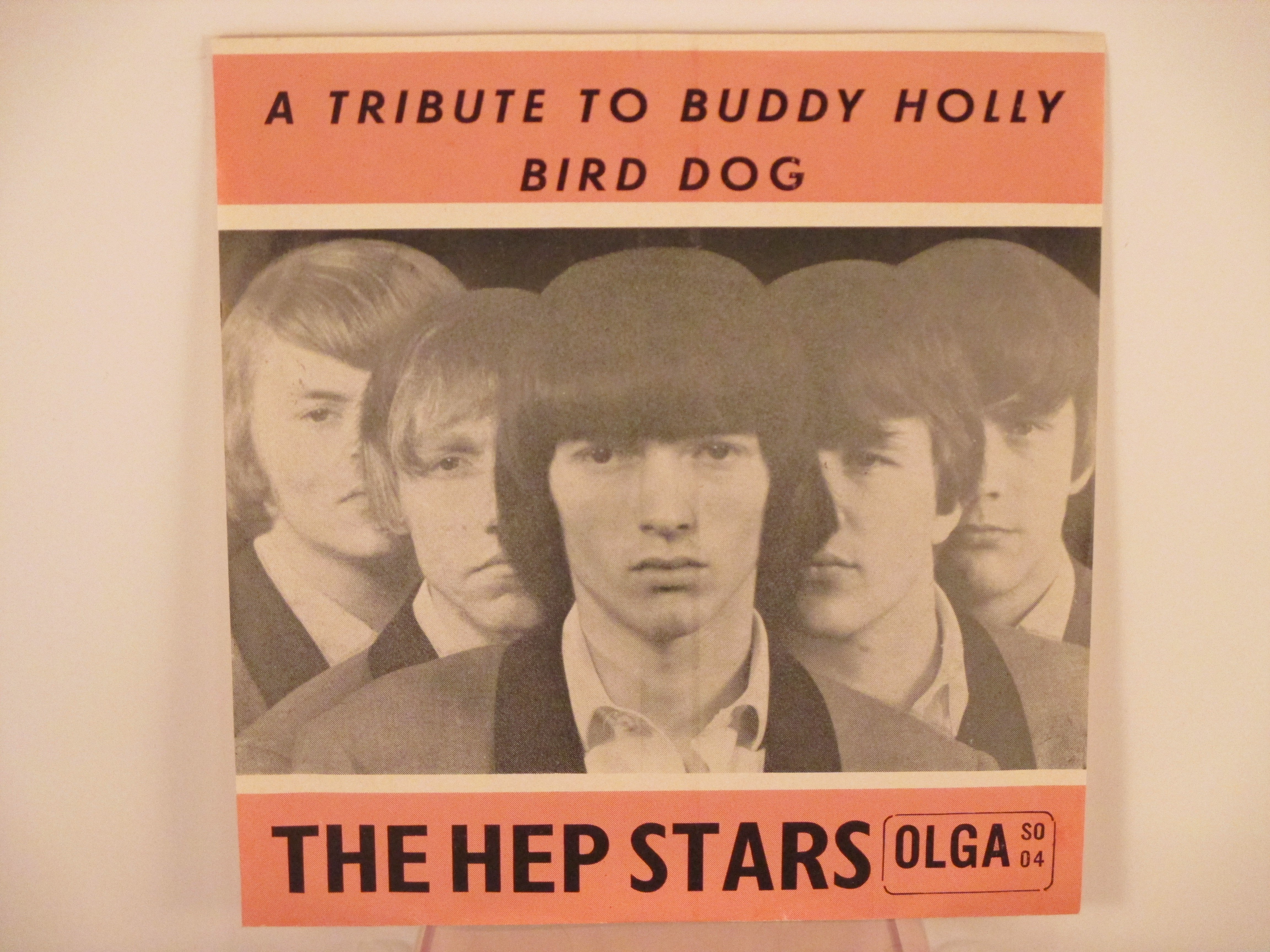 HEP STARS : Tribute to Buddy Holly / Bird dog