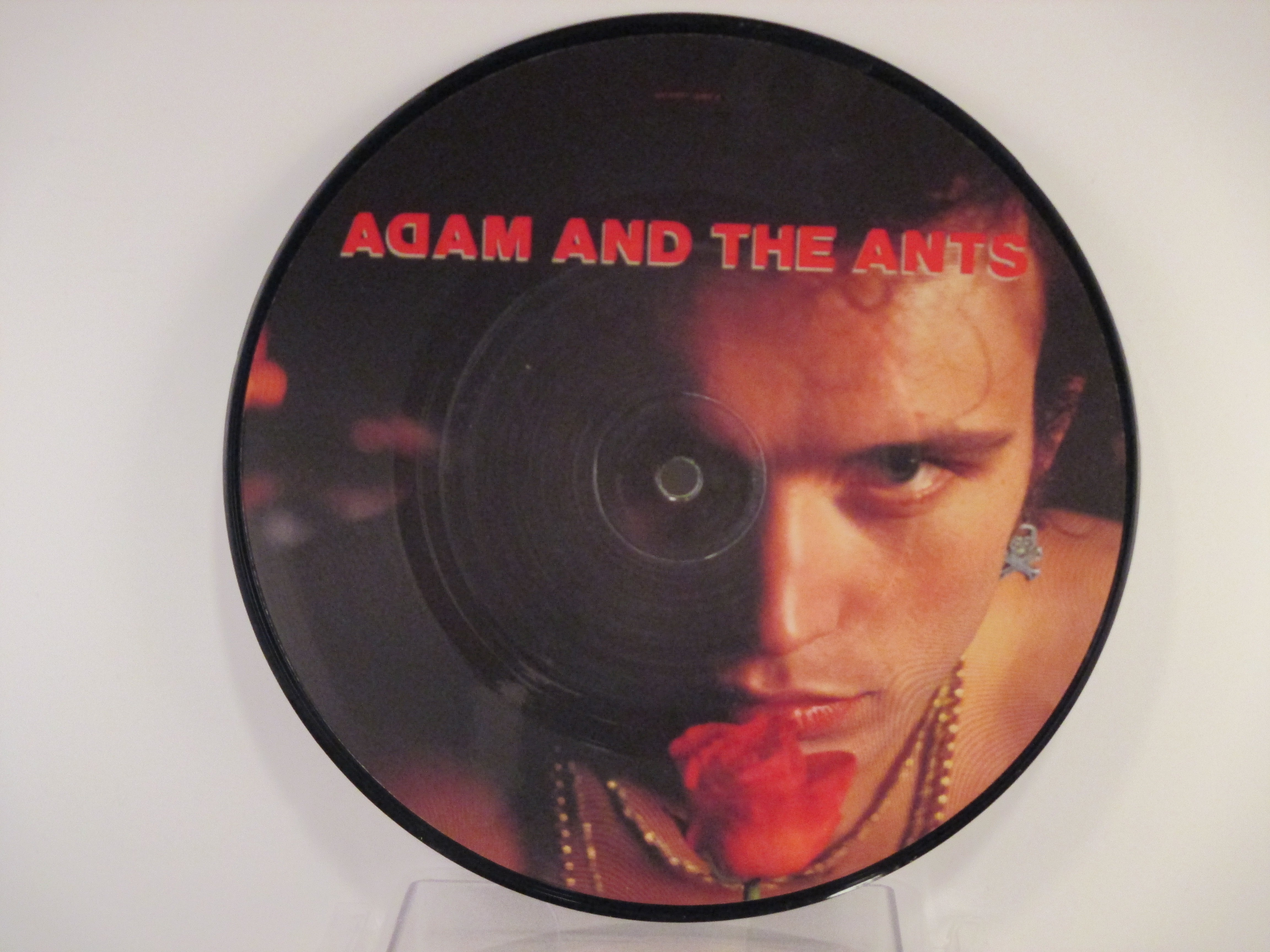 ADAM & ANTS : Goody two shoes / Red scab