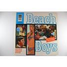 """BEACH BOYS : """"Surf beat fun"""""""