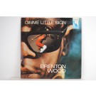 BRENTON WOOD : Gimme little sign / I think you've got your fools mixed up