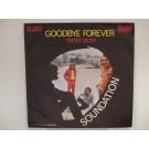 SOUNDATION : Tricky Dicky / Goodbye forever